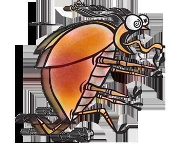 3 consejos para evitar la aparici n de plagas for Control de plagas badajoz
