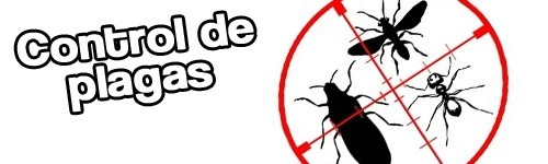 Control de plagas en granada archives arplagas for Control de plagas badajoz