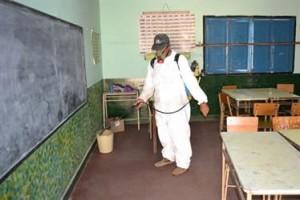 Planes De Higiene en Granada: Ar- Plagas